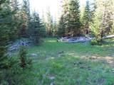 TBD Buck Ridge Trail - Photo 19