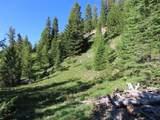 TBD Buck Ridge Trail - Photo 2