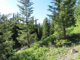 TBD Buck Ridge Trail - Photo 3