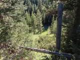 TBD Buck Ridge Trail - Photo 4