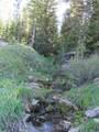 TBD Buck Ridge Trail - Photo 8