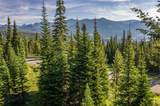 TBD Wildridge Fork - Photo 10