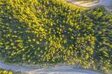 14 Beehive Basin - Photo 8