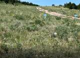 59 Whitetail Butte - Photo 18