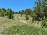 59 Whitetail Butte - Photo 19