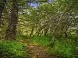 8480 Gooch Hill - Photo 16