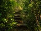 8480 Gooch Hill - Photo 20