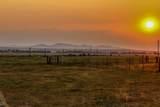 Buffalo Jump Ranch - Photo 34