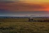 Buffalo Jump Ranch - Photo 36