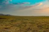 Buffalo Jump Ranch - Photo 37