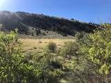 Tract 1-5A Fork Little Sheep Creek Road - Photo 10