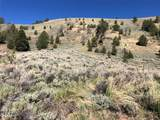 Tract 1-5A Fork Little Sheep Creek Road - Photo 17