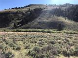 Tract 6 Fork Little Sheep Creek Road - Photo 3