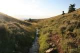 NHN Freedom Trail - Photo 5