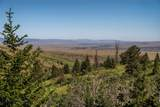 667 Mission Creek Road - Photo 26