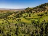 667 Mission Creek Road - Photo 3