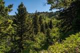 667 Mission Creek Road - Photo 30