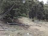TBD Biven Creek Ridge Rd 260 Acres - Photo 7