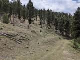 TBD Biven Creek Ridge Rd 260 Acres - Photo 8