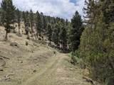 TBD Biven Creek Ridge Rd 260 Acres - Photo 9