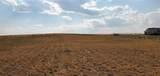 Lot 181 Tbd Rolling Prairie Way - Photo 6