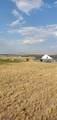 Lot 181 Tbd Rolling Prairie Way - Photo 9