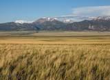 TBD Montana Way - Photo 6