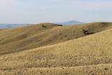 NHN Freedom Trail - Photo 7