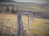4 Box Canyon Road - Photo 7