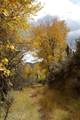 253 Hells Canyon - Photo 30
