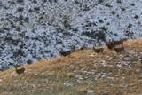 253 Hells Canyon - Photo 32