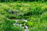 1063 Clear Creek Trail - Photo 30