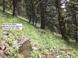 tbd Tobacco Root Mountains South - Photo 18