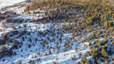 TBD Tenderfoot Trail - Photo 12