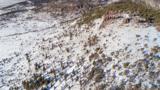 TBD Tenderfoot Trail - Photo 6