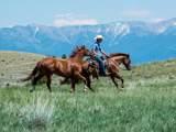 Lot 60 Gallatin River Ranch - Photo 8