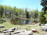 1818 Moose Creek - Photo 4