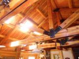 1818 Moose Creek - Photo 8