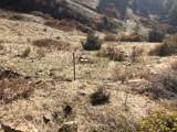 NHN Off Mtn Lion Gulch - Photo 4
