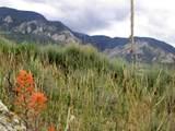 837 Meeteetsee Trail Road - Photo 5