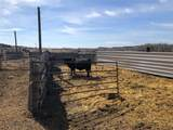 4030 Custer Frontage Rd - Photo 41