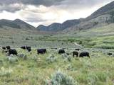 TBD Crystal Creek Ranch Road - Photo 2