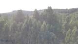10 acres Skunk Creek Road - Photo 13