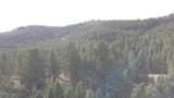 10 acres Skunk Creek Road - Photo 14