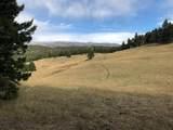 10 acres Skunk Creek Road - Photo 16
