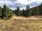 10 acres Skunk Creek Road - Photo 21