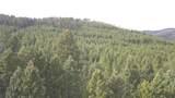 10 acres Skunk Creek Road - Photo 7