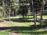 207 Silvertip Trail - Photo 5