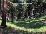207 Silvertip Trail - Photo 6