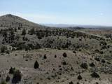 TBD Lone Mountain Road - Photo 1